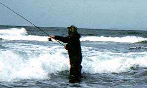 Spinning for bass in plunging waves on a flat ledge.